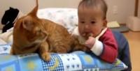 Kedi ve bebek dostluğu