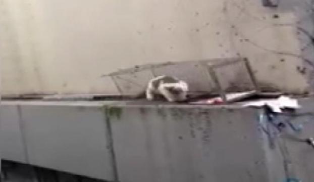 Metrobüs durağı mahsurları kurtarıldı