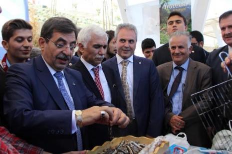 Bakan Güllüce'den erken seçim açıklaması